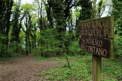 sentieri del bosco