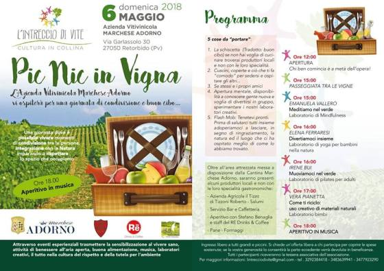 6_picnic_vigna